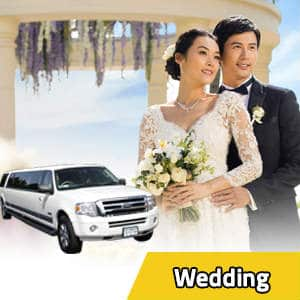 Limousine Wedding Services